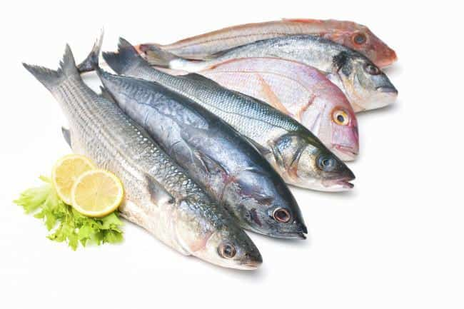 Pescado fuente Omega 3